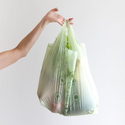Pungi BIO compostabile 27x50 (100buc)